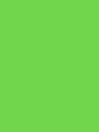 LANA No. 12 200M LIME GREEN
