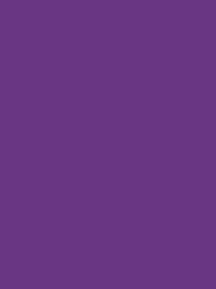 AEROSTITCH No. 60 1000M PURPLE