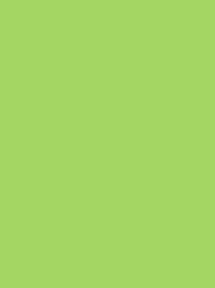 FROSTED MATT No. 40 500M   LIME GREEN