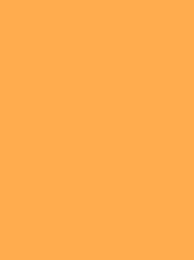 FROSTED MATT NO. 40 500M   NEON APRICOT