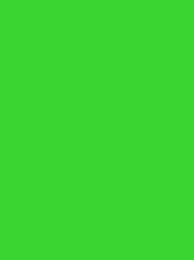 FROSTED MATT NO. 40 500M   NEON LIME